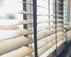 Values and Views: Window Covering Comparisons Blinds Image