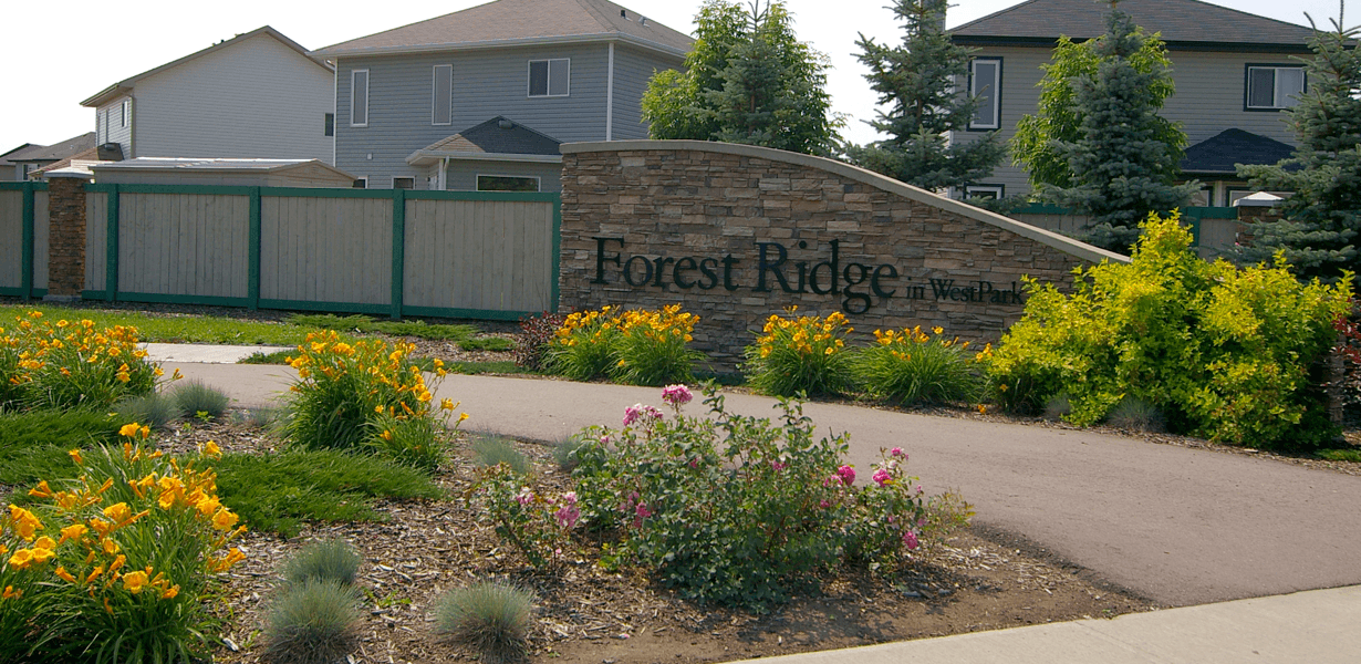 Love Your Community: Forest Ridge Featured Image