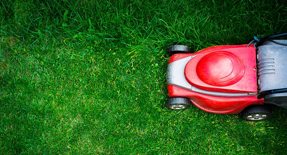lawn_care_blog-1